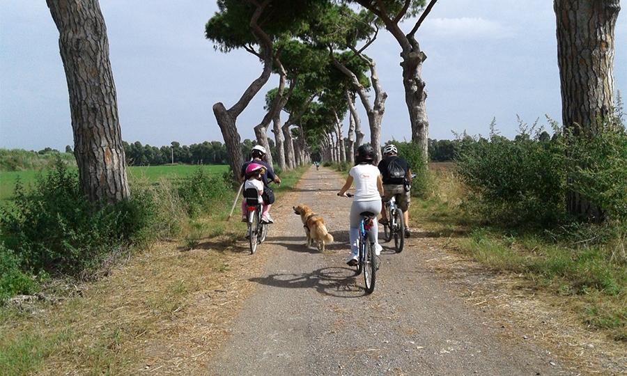 Biciclettata alla Torre Perla
