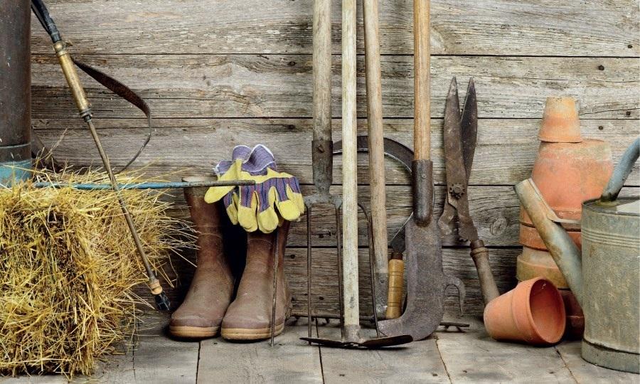 Corsi di giardinaggio a Macchiagrande