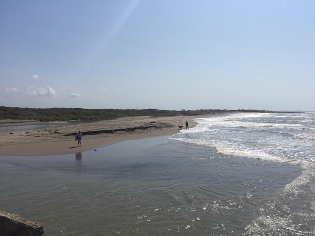 Argine duna ristretta k