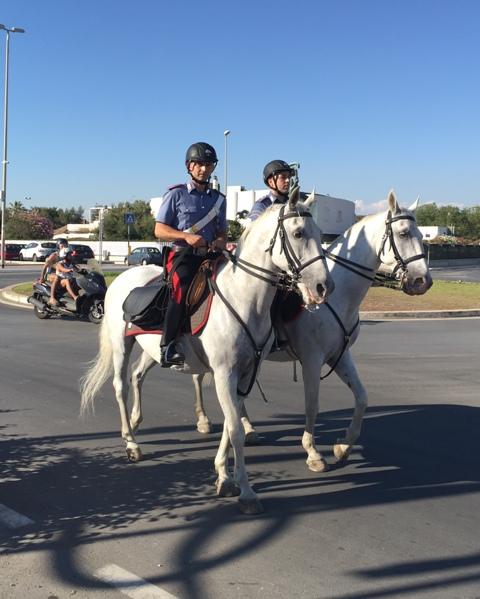 Carabinieri a cavallo 2