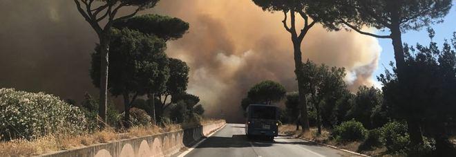 Carmine Ippoliti - castel fusano incendio