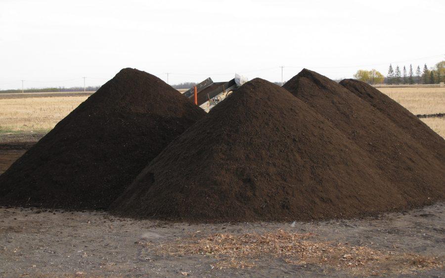 Compost-di-qualità