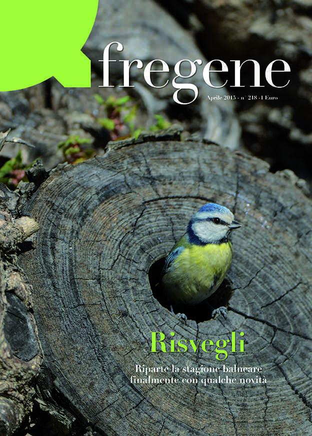 Copertina QFregene apr 2015x