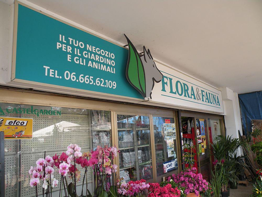 Flora e Fauna copertina