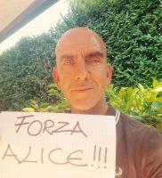 Forza Alice 14