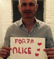 Forza Alice 3