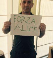 Forza Alice 6