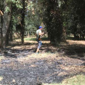 Incendio Parco Avventura 1k