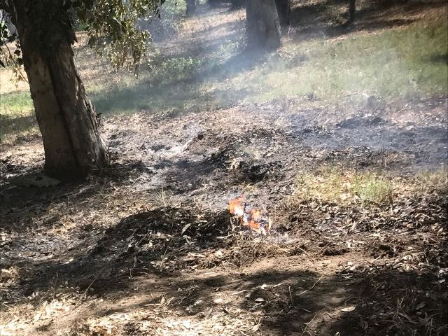 Incendio Parco Avventura 2 k