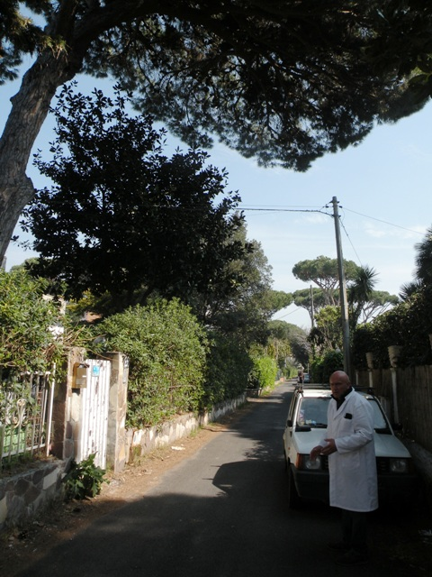 Pino via Ricicone 34 e Berardi
