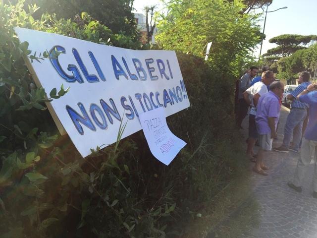 Protesta piazza alberi no k