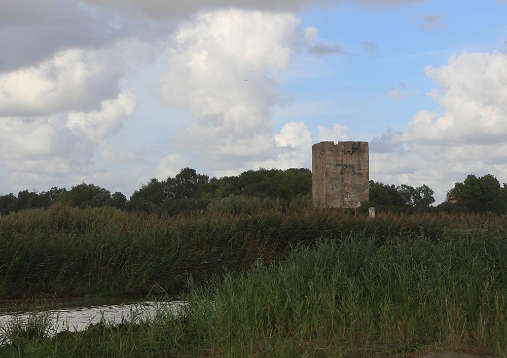 torre-palidoro