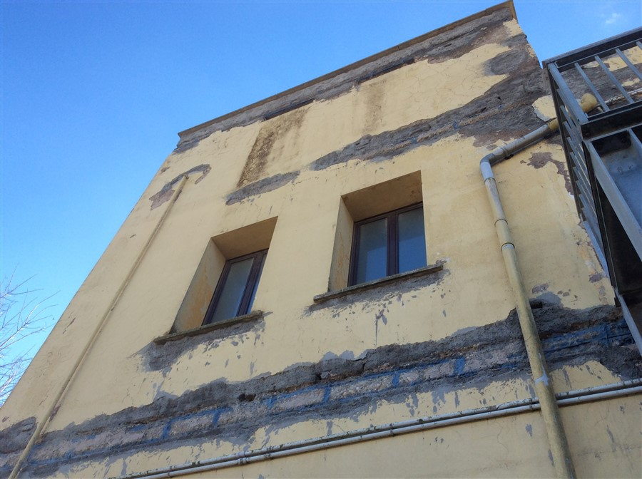 baffi maccarese (900 x 672)