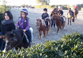 Aurelia Riding Club, sport e ristorazione
