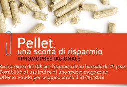 Edilizia Silvestri – Promo prestagionale sul pellet e stufe