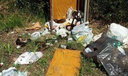 Se questa è una Pineta, nemmeno i cestini puliti…