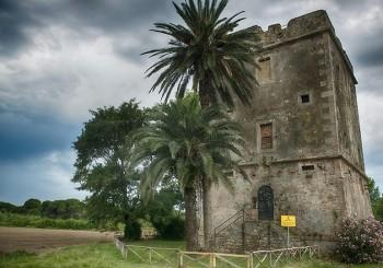 Torre di Maccarese e Bosco dell'Arrone il 9 aprile