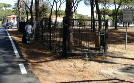 Prevenzione incendi, proseguono i lavori in Pineta