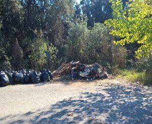 Parco Pubblico della Maccarese, rimozione dei rifiuti