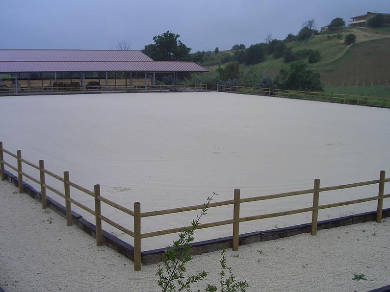 centro equestre palidoro