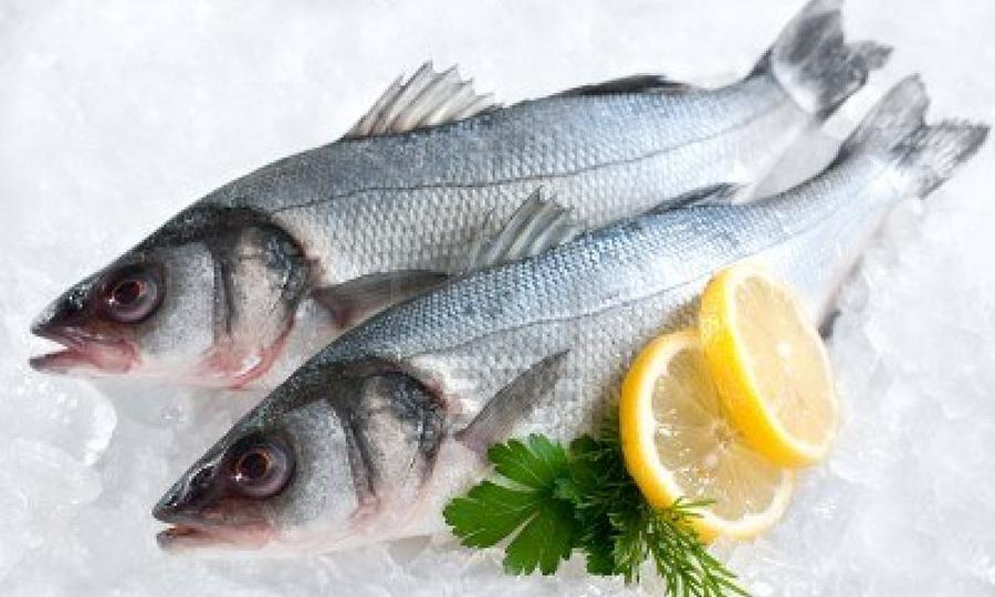 La Spigola nella gastronomia regionale