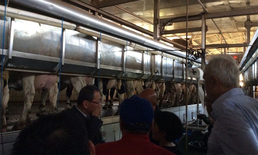 Delegazione cinese di Hainan in visita alla Maccarese Spa