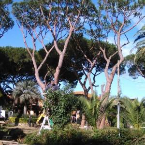 piazza Maccarese pulizia 2