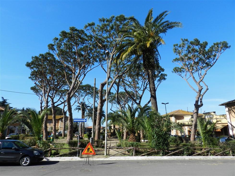 piazza del maccarese 2 marzo (979 x 734)