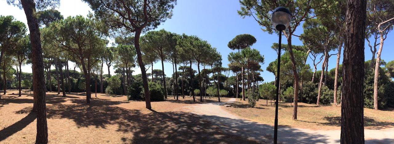 pineta-monumentale-fregene