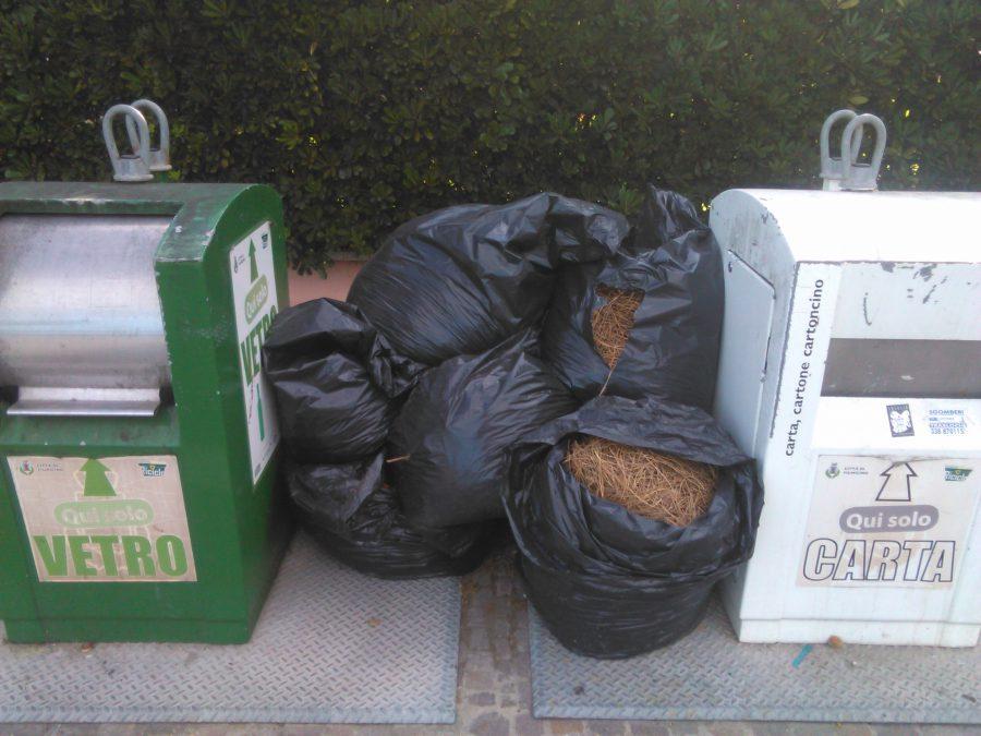 rifiuti cassonetti scomparsa