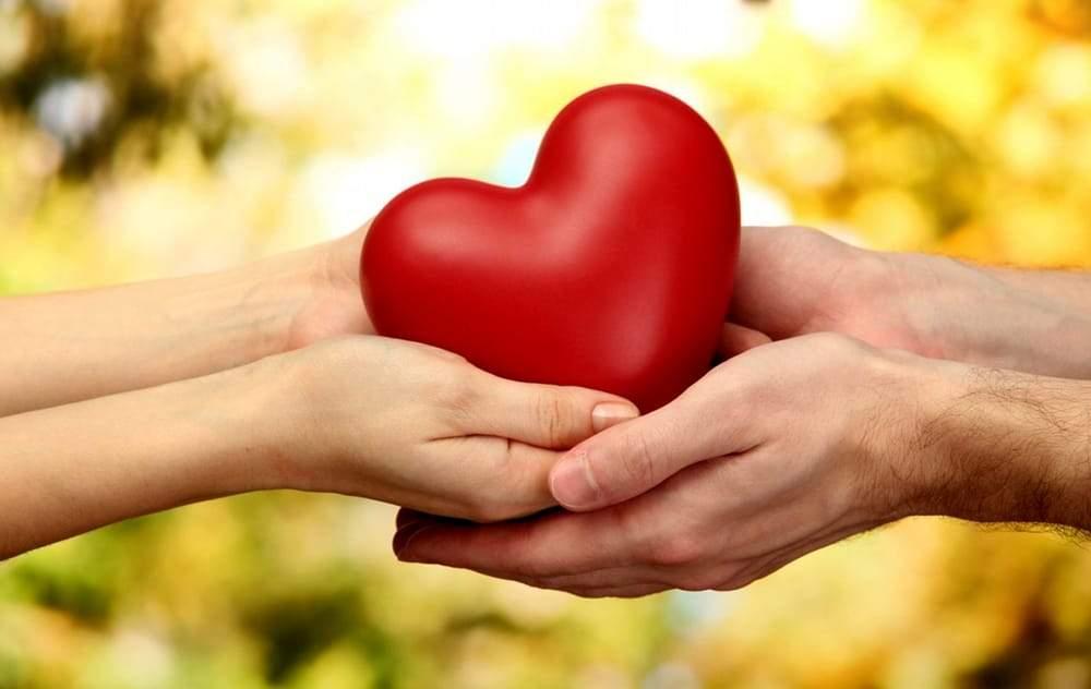 Il grande cuore della Rivetta, spesa e pasti - Fregeneonline.com